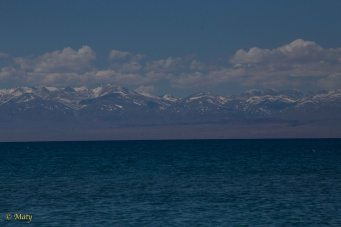 Hidden Treasure, Issyk-Kul, Kyrgyz Republic, May 2014 170