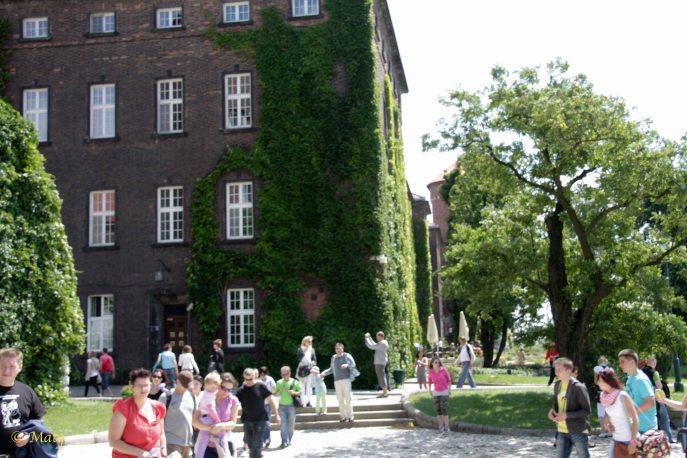 Plenty of tourists visiting Wawel