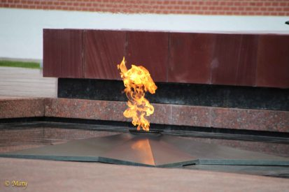 Flame at the Tomb of the Unknown Soldier