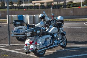 two Police Harley bikes