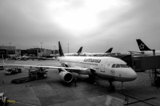Airbus A320-200 at the gate