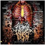 original-amof_-_the_anatomy_of_impurity_cover
