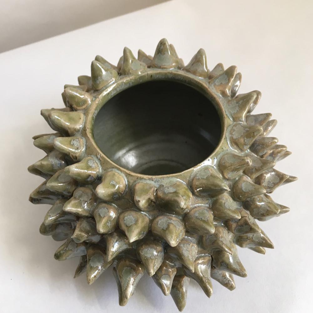 Sea urchin vases