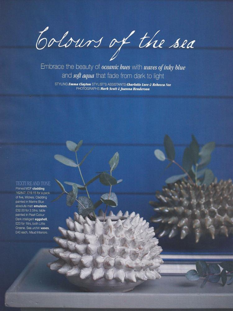 Spiky-sea-urchins-in-Coast-magazine