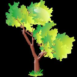hannes tree