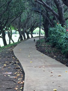 where in Kihei is this path?