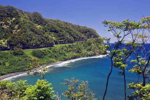 View along the Road to Hana | Polynesian Adventure Tours