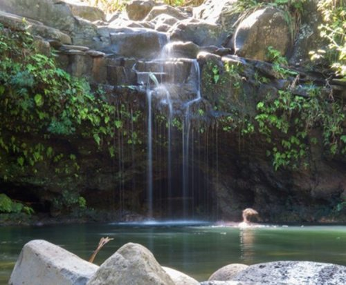 Hike Maui | Tranquil Pool by East Maui Waterfalls