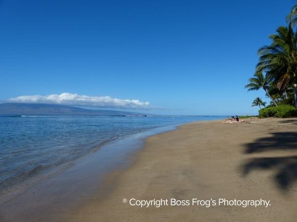 Baby Beach Lahaina Maui Family-Friendly Maui Beach