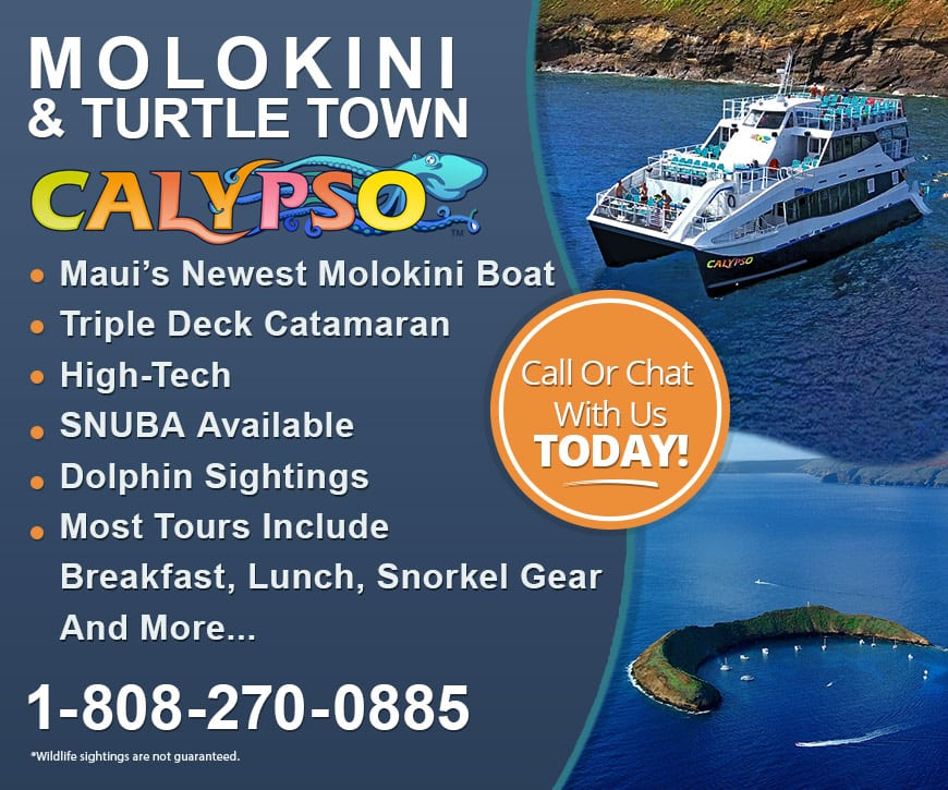 Molokini Calypso maui snorkel tour is the best! Call Us Now.