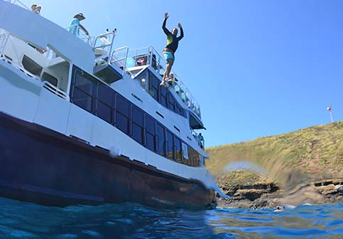 Calypso Afternoon Snorkel Tour