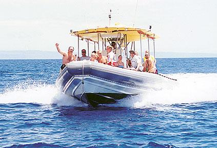 Lanai Snorkel Tour