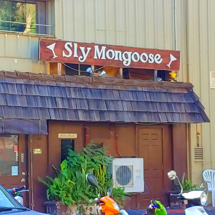 Sly Mongoose Happy Hour - Lahaina, Maui, HI