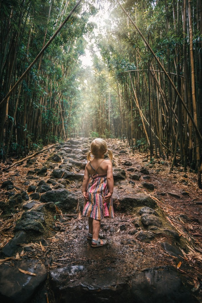 Little Girl in Bamboo Forest in Maui, Hawaii