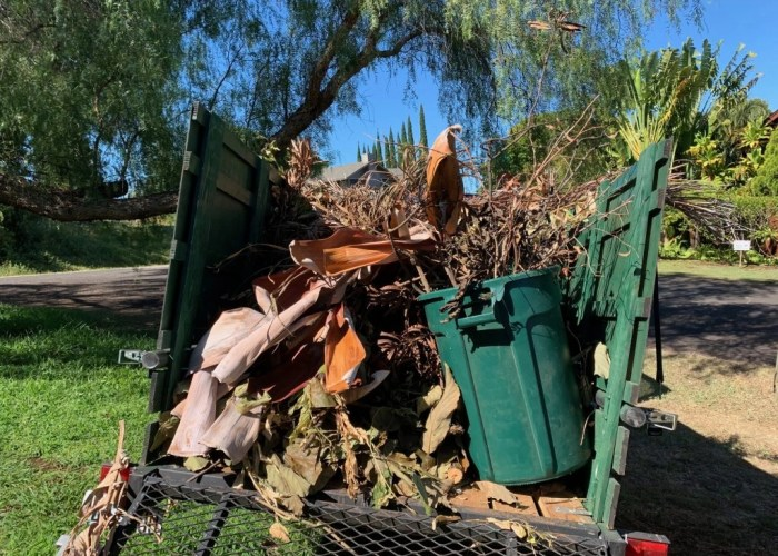 maui green waste remval yard clean up