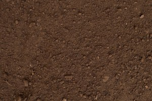 maui topsoil delivery