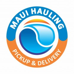 Maui Cargo Van Moving Delivery Courier Service