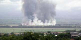 Cane burning clean air keiki