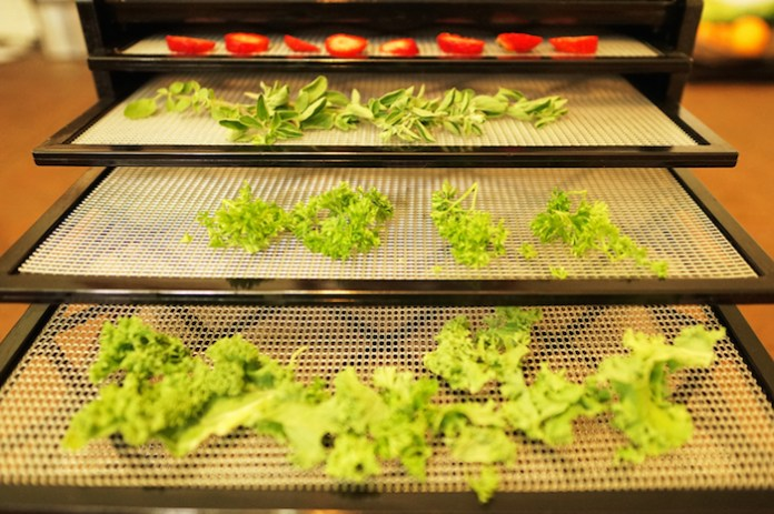 dehydrator conscious cooking