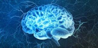 harmonyum brain rewiring