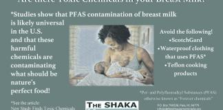 Toxic chemicals breast milk