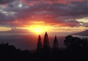 Beautiful maui sunset from Kula