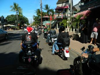 Maui Toys 4 Tots, in support of (12)