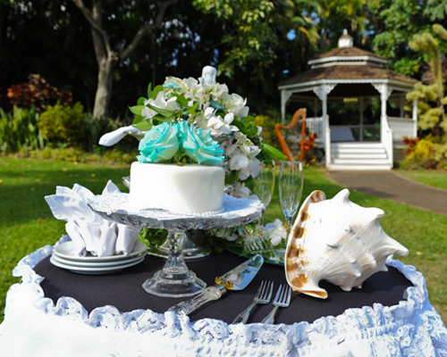 Maui Wedding Package tropical garden wedding
