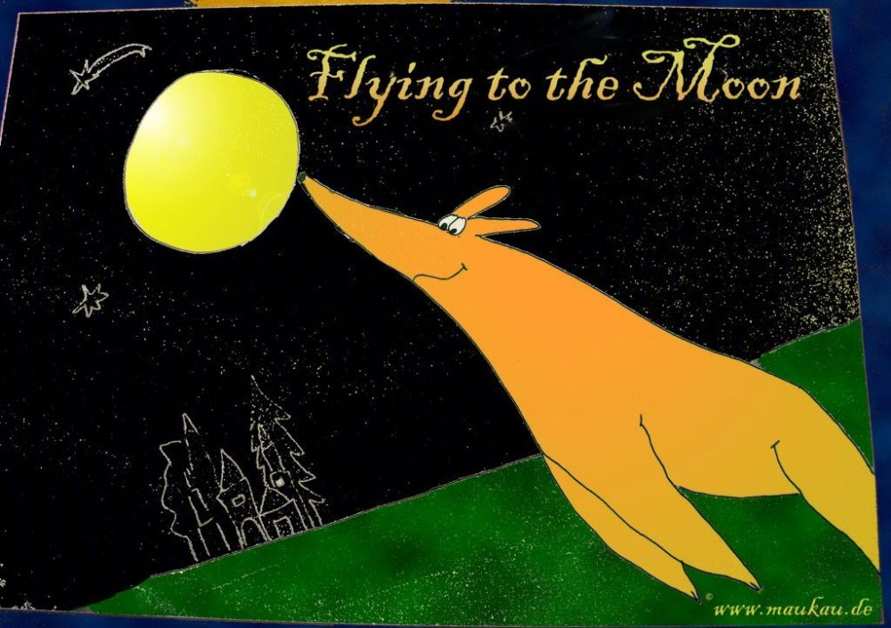 fly-moon1-1024x722