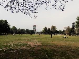"""Vista del edificio de Rectoría y de la Biblioteca Central de la UNAM desde """"Las Islas"""" - lado Este de Biblioteca Central"""