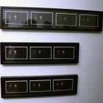 Micronostalgia, 2017, Annabel Castro, 10 fotogramas, Colección Hashi Gallery.