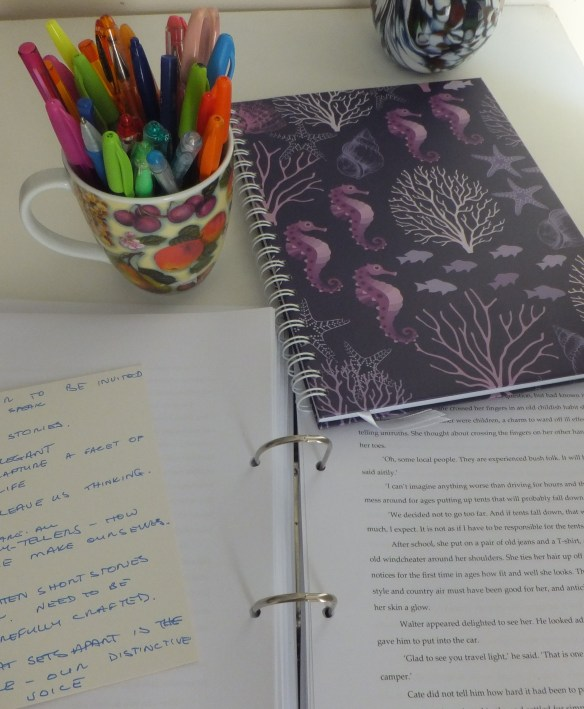 Purple prose manuscript hoping to become a book