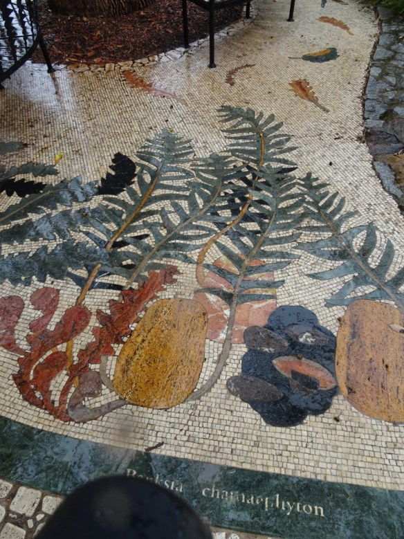 Mosaic tiled path in the Banksia Grove