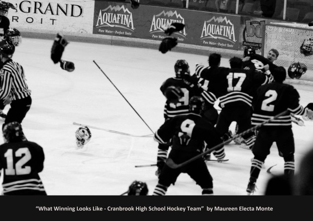 2015 Cranbrook Hockey Team Wins State Championship