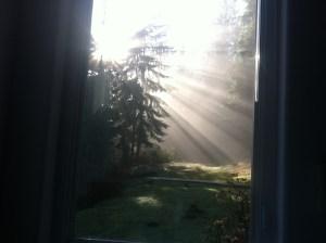 Magic Sunrise