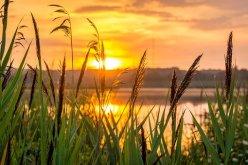 sunrise-1670979__340