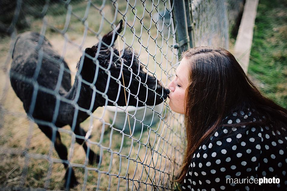 kissing alpacas at Delille Cellars