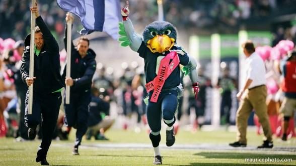 Blitz the Seahawk Mascot
