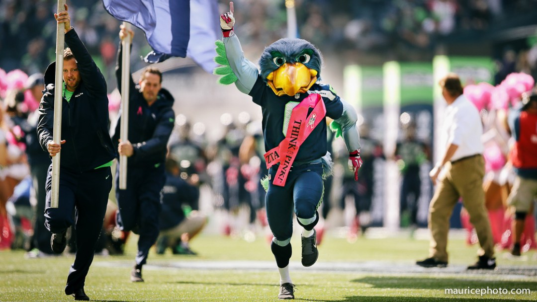 Blitz the Seahawk Mascot