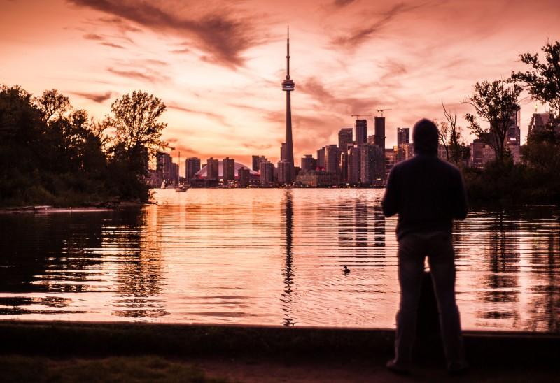 Toronto Rose