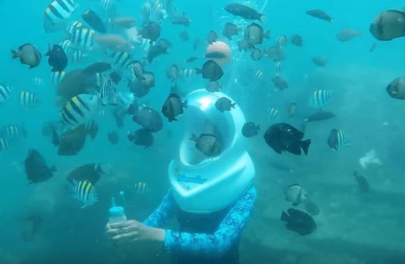 Experience Mauritius Undersea Walk Excursion