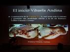 Clases Magistrales de Vihuela Andina
