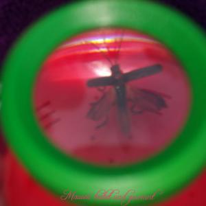 Fliegetier