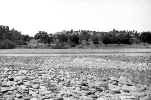 From the USGS: Channel of American River near Folsom City, The lower terraces are of hydraulic tailings first deposited by the river and afterwards partly removed. Sacramento County, California. 1905.