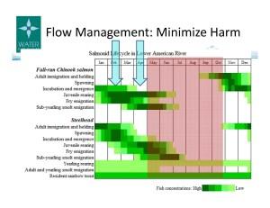 DSC Gohring Slide 17 Flow Management