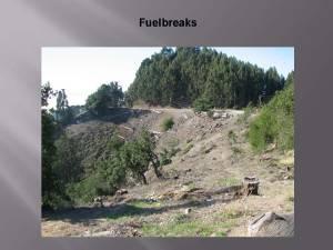 August2014_Agenda_Item_8_Attach_4_Powerpoint_BoardOfForestry_Page_16