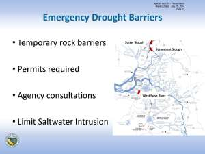 Leahigh drought barriers