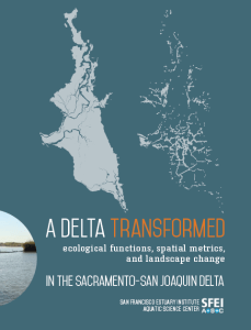A Delta Transformed