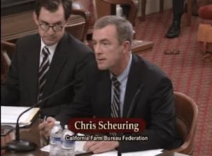 Chris Scheuring 1