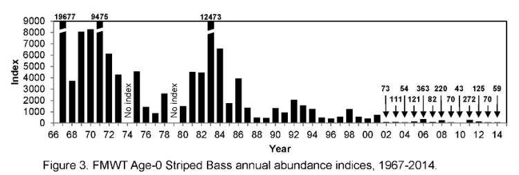 FMWT Stiped bass index graphic